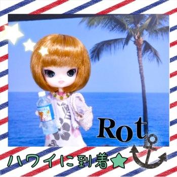 rilakkuma-hawaii0601.jpg