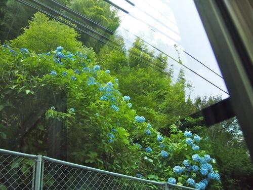 201406kyoto09.jpg