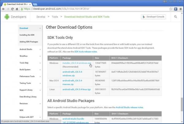 「installer_r24.3.4-windows.exe」リンクをクリック