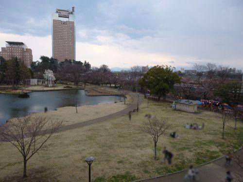 歩道から見下ろしたさちの池周辺(2)