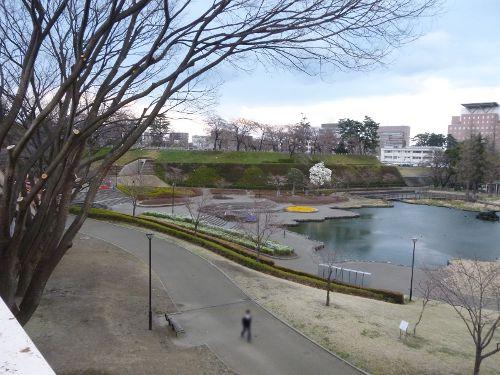 歩道から見下ろしたさちの池周辺(4)