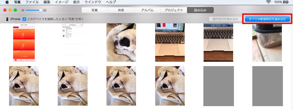 iPhone写真