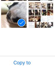 iPhone写真バックアップ11