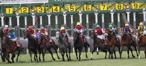 弥生賞の登録馬、11頭中7頭重賞ウイナーwww