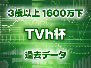 2015年 TVh杯 過去のデータ