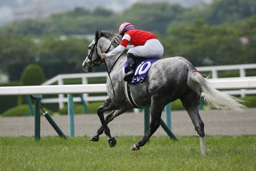 ゴールドシップ、殿堂入りどころか年度代表馬も0www