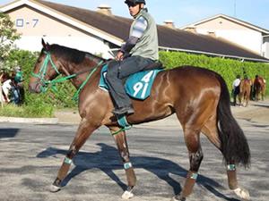 シーザリオ、ウオッカの仔ら2歳馬近況