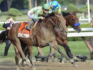 【悲報】米3冠馬アメリカンファラオ、敗戦