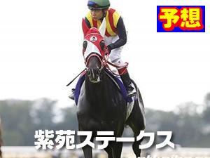 2015  紫苑ステークス 予想