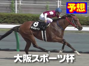 2015  大阪スポーツ杯 予想