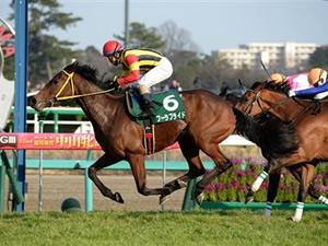 フーラブライド引退、繁殖牝馬に
