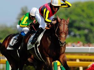 2冠馬ドゥラメンテ、世界制覇へ