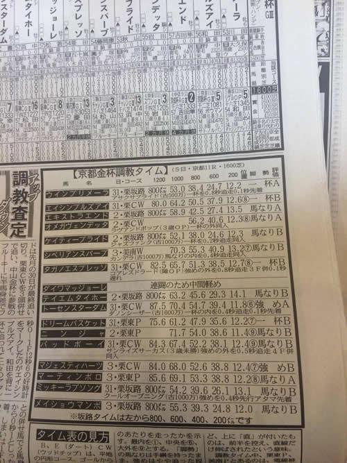 2016 京都金杯 調教