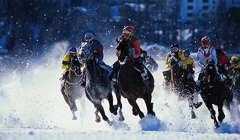 雪上競馬 スイス