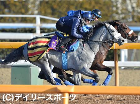 東京新聞杯が数年に一度の超ボーナスレースな件