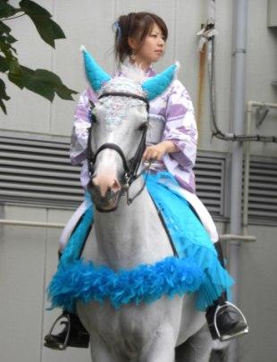 川崎競馬 誘導馬