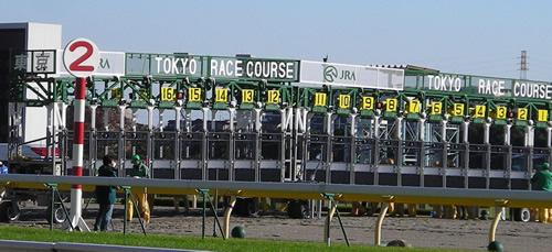 【フェブラリーステークス 枠順決定】7枠14番モーニン、2枠3番コパノリッキー