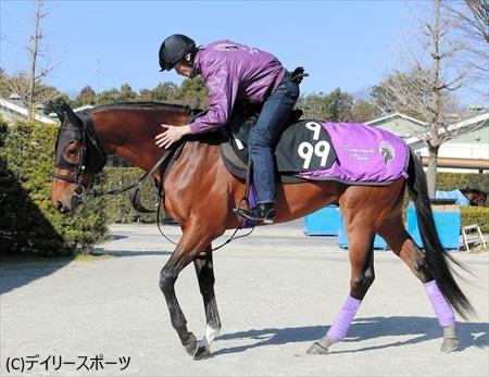 【弥生賞】マカヒキ「弥生賞、普通に走れば負けようがない」