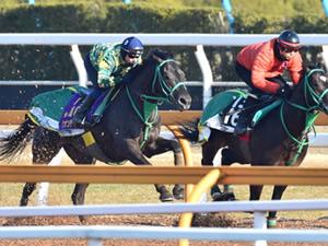 【弥生賞】デムーロがリオンディーズを大絶賛!「こんなに強い3歳馬に乗った事がない」