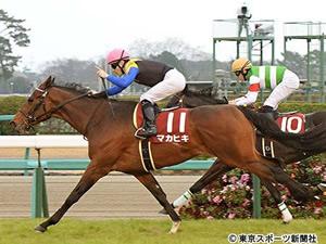 【皐月賞】マカヒキ、とりあえず1戦だけ川田とコンビ