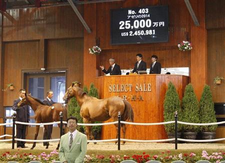 アゼリの2014の馬名がアドマイヤエスパーに決定【セレクト最高額2憶五千万】