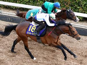 【高松宮記念】ミッキーアイル逃げ宣言「ハナに行くだけ。付いてくる馬がいれば止まるよ」