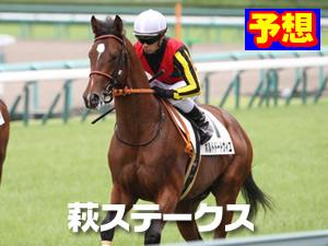 萩ステークス 2014年
