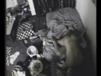 【個人撮影】自宅でのプライベートSEXを彼氏が盗撮【盗撮動画のぞき本堂】