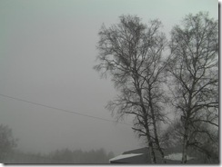 201001121_000