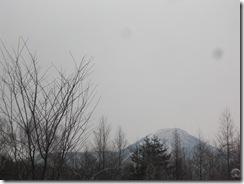 20100314_na001