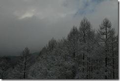 2011_02_18_2se000