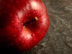 「妊婦さんが危ない!初の大規模調査でリンゴ病の恐怖の実態が明らかに」の続きを読む