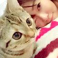 ワイドナショー画像 2016年元旦スペシャルで指原莉乃のイチオシは猫ブームについて。でも出演者は乗って来ず盛り上がりはいまいち 2016年1月1日