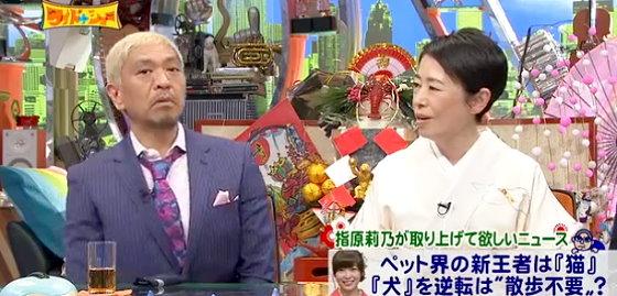 ワイドナショー画像 元旦SP 松本人志 安藤優子「飼いやすい犬という言い方に腹が立つ」 2016年1月1日