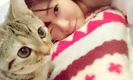 ワイドナショー画像 2016元旦スペシャル 指原莉乃と飼い猫のツイッター写真 2016年1月1日