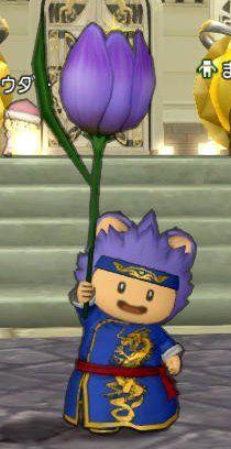 20170428紫色のチューリップ傘