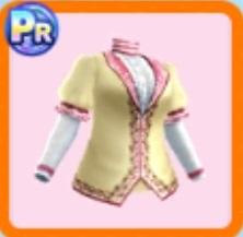 貴婦人のジャケット